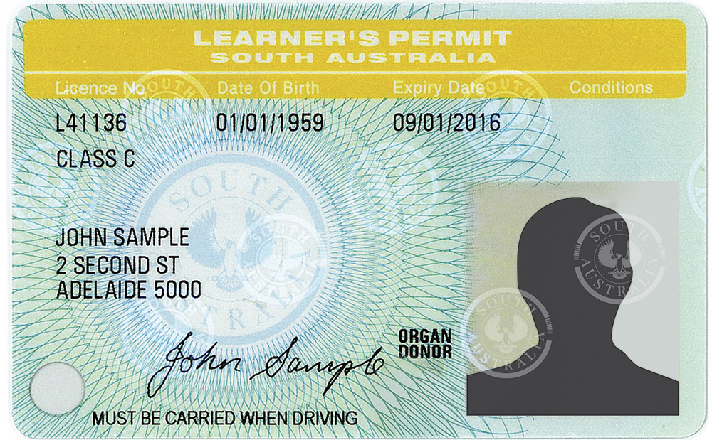 Sample learners permit